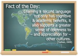 LEARNING A LANGUAGE AN APPRECIATION OF OTHER CULTURES