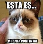 Grumpy Gato