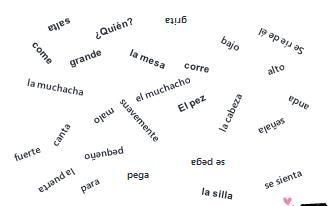 matamoscas week 5 Spanish I A