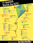 15-spanish-words-for-kite
