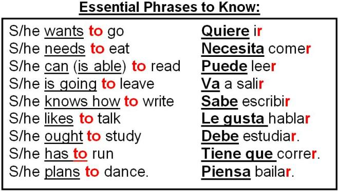 essential-phrases