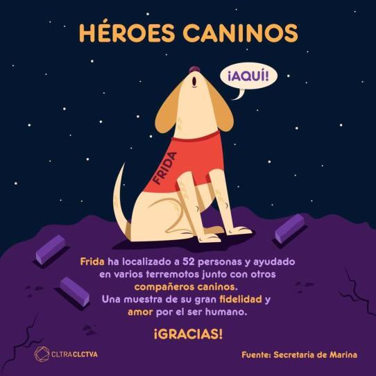 FRIDA heroe canino